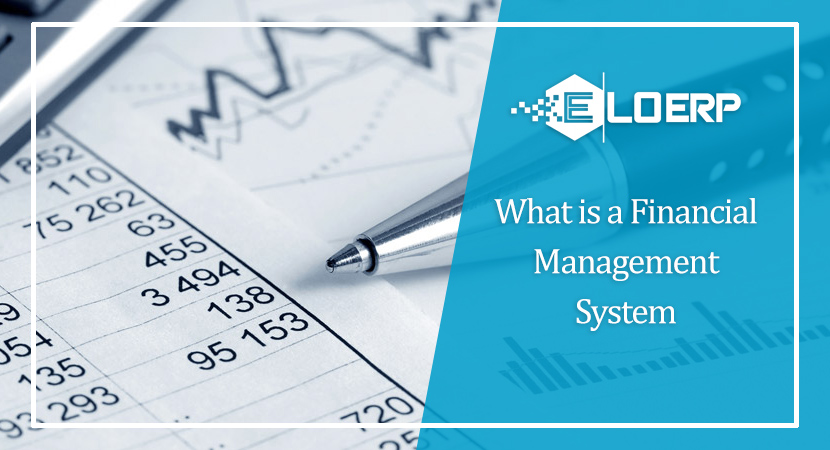 What Is a Financial Management System